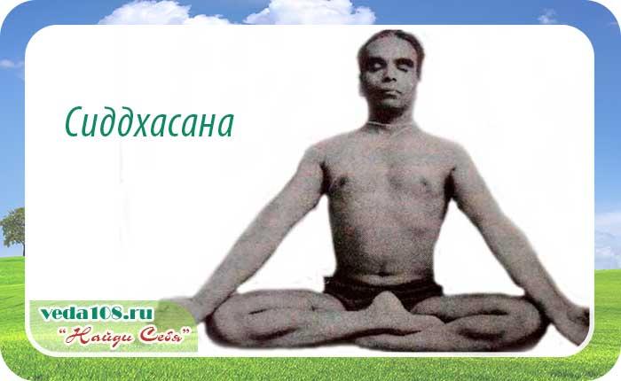 Правильная методика Сиддхасаны