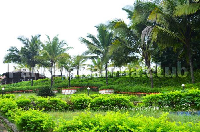 Приглашаю поехать в Индию на Панчакарму