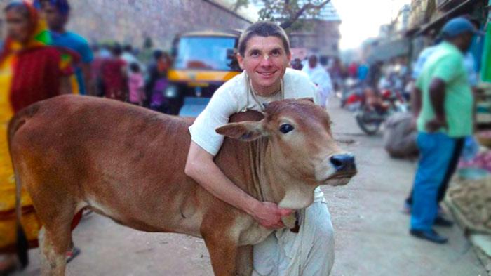 Вегетарианцы и коровы